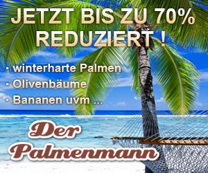 Palmenmann Werbung